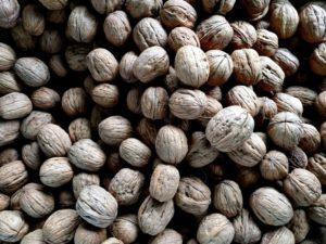 Hvad man kan lave af mad med nødder